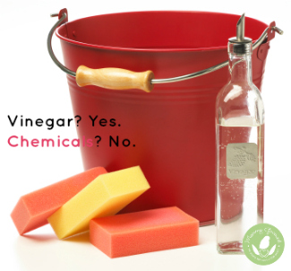 vinegar and sponges next to a red bucket