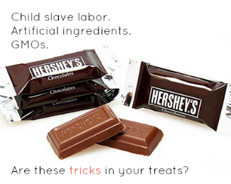hershey's candy bars on a white background