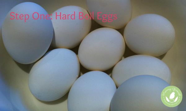 white eggs in bowl