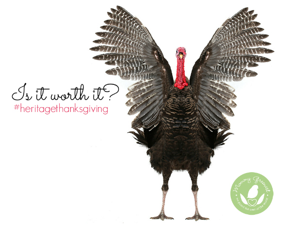 heritage turkey raises wings against white background