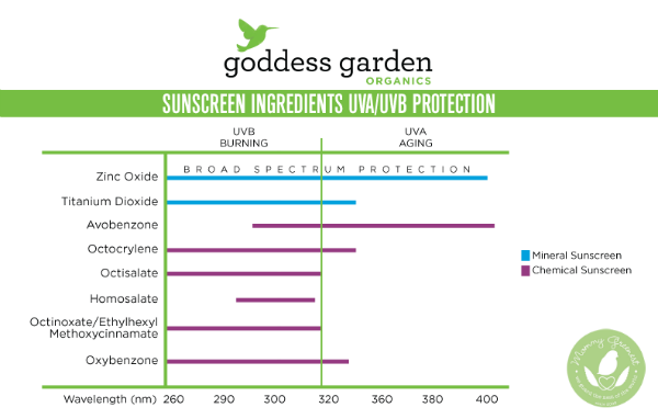 A chart showing how chemical sunscreens stack up against reef-safe sunscreens