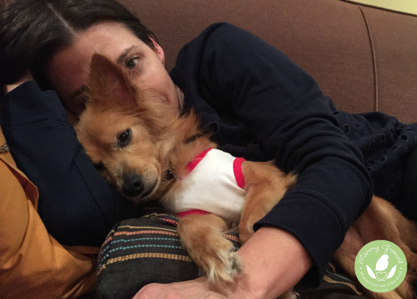 Red dog in arms of brunette woman on couch